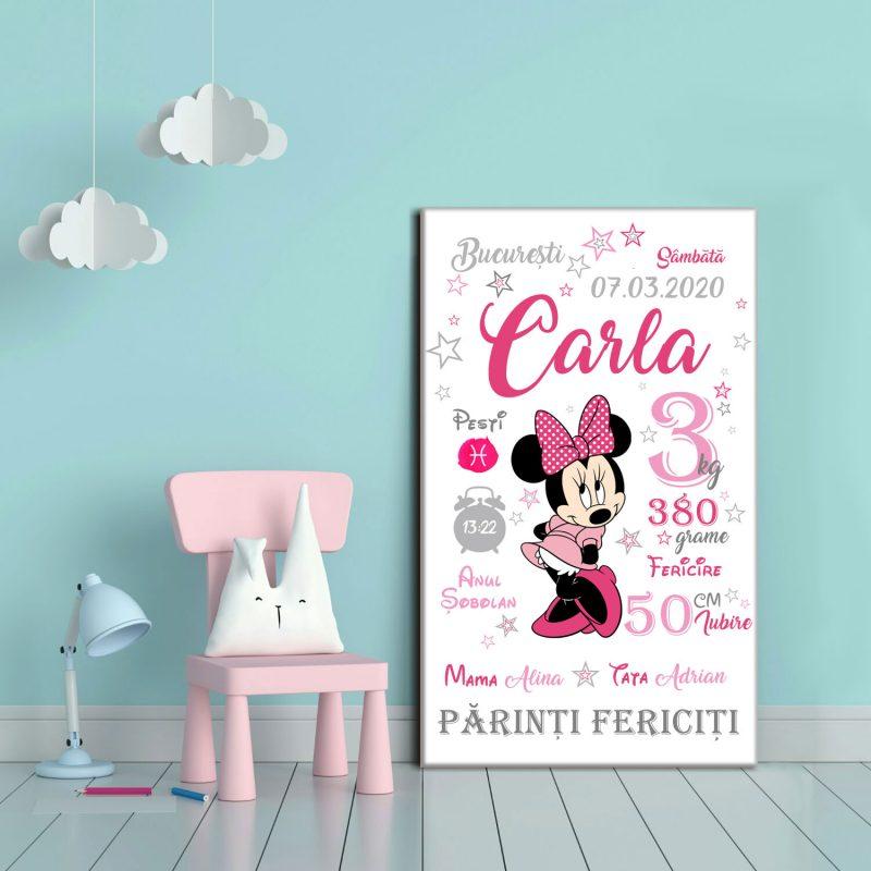 Tablou Canvas Personalizat Minnie 01