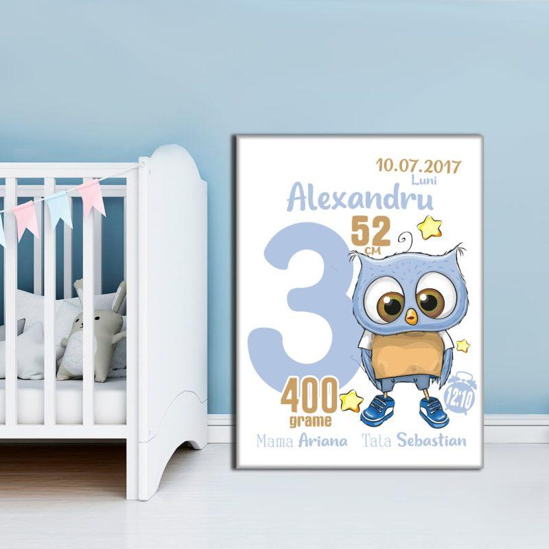 Tablou Canvas Personalizat Bufnita Alexandru