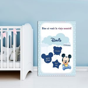 Tablou Canvas Personalizat Mickey 03
