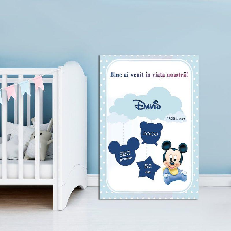 Tablou Canvas Personalizat Mickey 03
