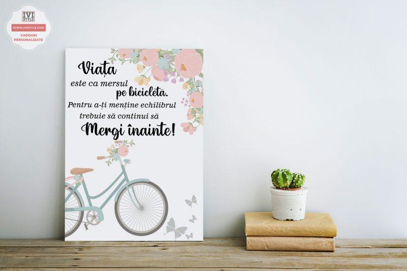 Tablou Personalizat Canvas Viata este ca mersul pe bicicleta Albastra