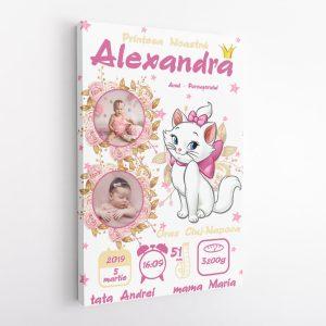 Tablou Personalizat Canvas Marie Pentru Fetite v1